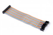 40p Rainbow IDC connector to Male Jumperwires 20cm